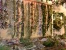 cedar-garland-wall