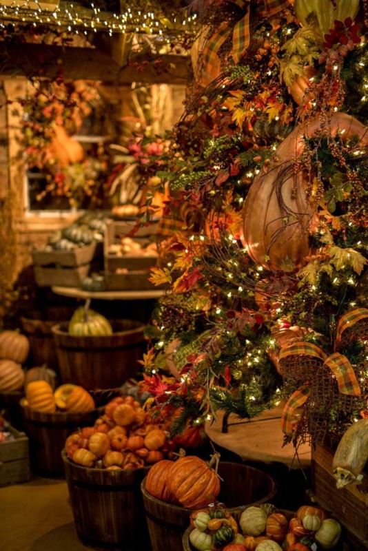 Fall Decorators Warehouse